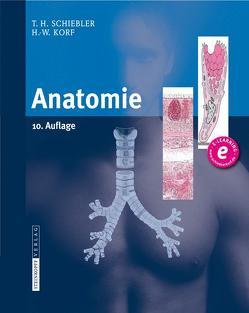 Anatomie von Korf,  Horst-W., Schiebler,  Theodor H