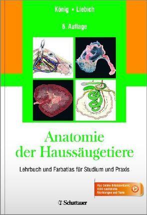 Lymphsystem: Alle Bücher und Publikation zum Thema