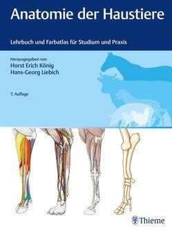 Anatomie der Haustiere von König,  Horst Erich, Liebich,  Hans-Georg