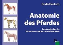 Anatomie des Pferdes von Hertsch,  Bodo, Spenlen,  Uwe