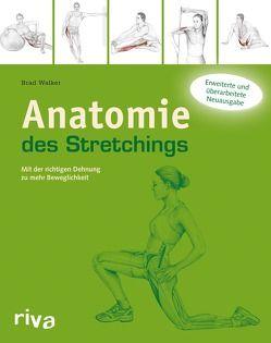 Anatomie des Stretchings von Walker,  Brad