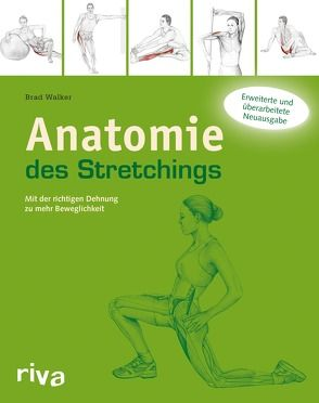Anatomie des Stretchings von Walker,  Brad