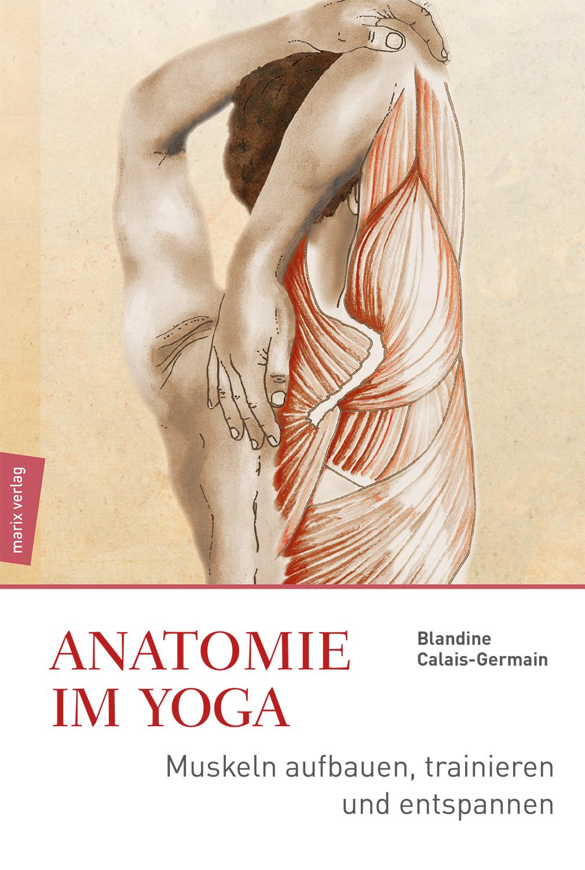 Anatomie des Yoga von Calais-Germain, Blandine: Muskeln aufbauen, trai