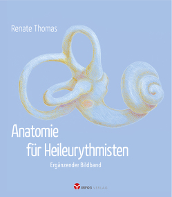 Anatomie für Heileurythmisten von Thomas,  Renate, Warning,  Albrecht