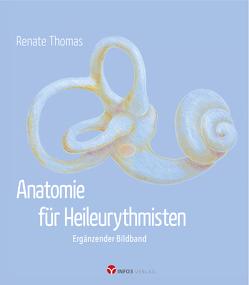 Anatomie für Heileurythmisten von Thomas,  Renate, Warning,  Albrecht