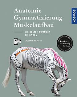 Anatomie, Gymnastizierung, Muskelaufbau von Higgins,  Gillian