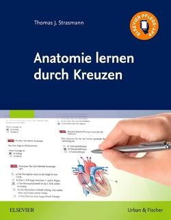 Anatomie lernen durch Kreuzen von Strasmann,  Thomas J.