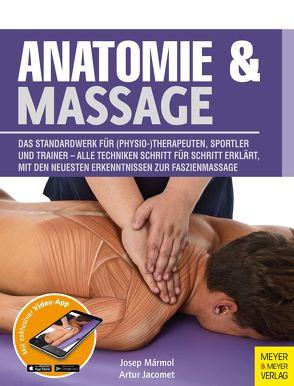 Anatomie & Massage von Jacomet,  Artur, Mármol,  Josep, Paidotribo