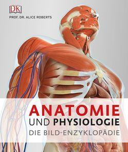 Anatomie und Physiologie von Roberts,  Alice
