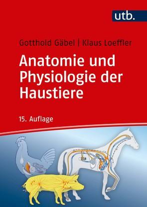 Anatomie und Physiologie der Haustiere von Gäbel,  Gotthold, Loeffler,  Klaus, Pfannkuche,  Helga