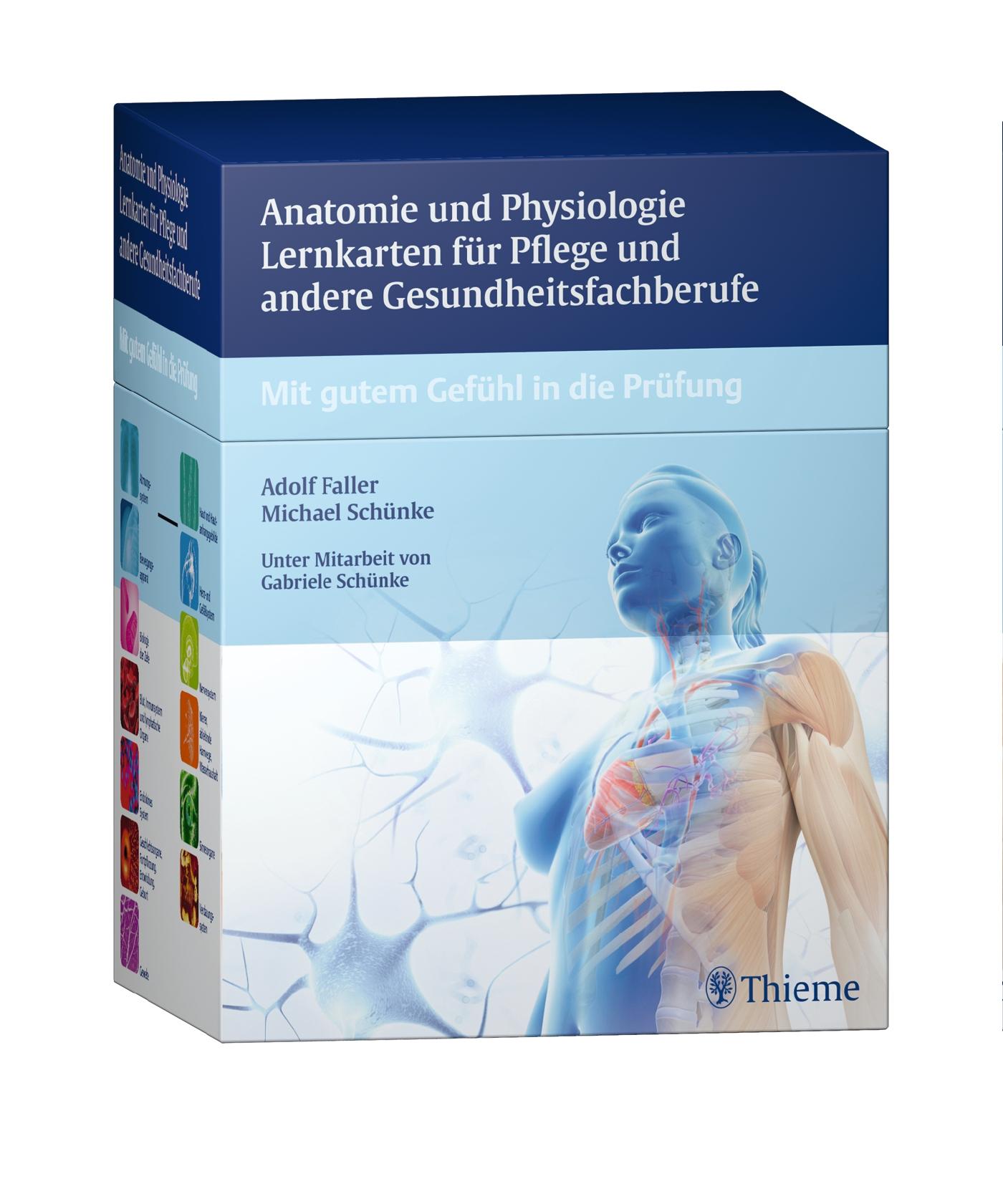 Niedlich Website Edu Anatomie Prüfung Galerie - Menschliche Anatomie ...