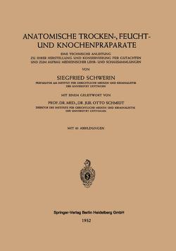 Anatomische Trocken-, Feucht- und Knochenpräparate von Schmidt,  Otto, Schwerin,  Siegfried