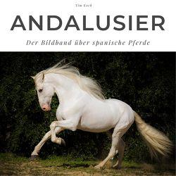 Andalusier von Koch,  Tim