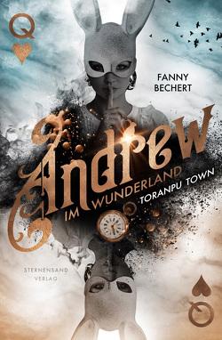 Andrew im Wunderland (Band 2): Toranpu Town von Bechert,  Fanny