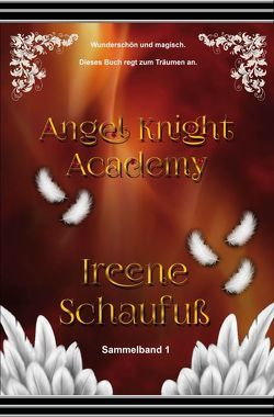 Angel Knight Academy 1 – (Magical Girl) von Schaufuß,  Ireene
