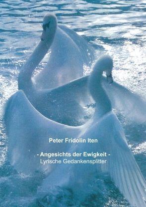 Angesichts der Ewigkeit von Iten,  Peter F