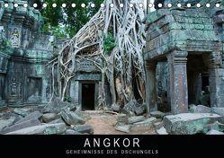 Angkor – Geheimnisse des Dschungels (Tischkalender 2019 DIN A5 quer) von Knödler / www.stephanknoedler.de,  Stephan