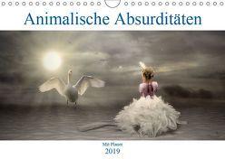 Animalische Absurditäten mit Planer (Wandkalender 2019 DIN A4 quer) von glandarius,  Garrulus