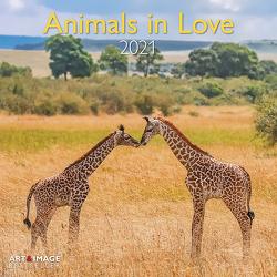 Animals in Love 2021 – Wand-Kalender – Broschüren-Kalender – A&I – 30×30 – 30×60 geöffnet