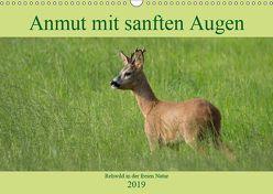Anmut mit sanften Augen – Rehwild in der freien Natur (Wandkalender 2019 DIN A3 quer) von Grahneis,  Sabine