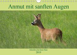 Anmut mit sanften Augen – Rehwild in der freien Natur (Wandkalender 2019 DIN A4 quer) von Grahneis,  Sabine