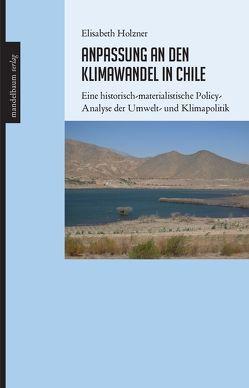 Anpassung an den Klimawandel in Chile von Holzner,  Elisabeth