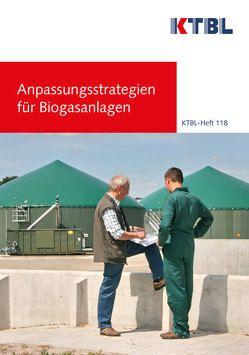 Anpassungsstrategien für Biogasanlagen
