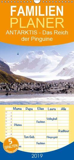Antarktis – Das Reich der Pinguine – Familienplaner hoch (Wandkalender 2019 , 21 cm x 45 cm, hoch) von Steinwald,  Max