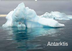 Antarktis (Wandkalender 2018 DIN A2 quer) von AnGe,  k.A.