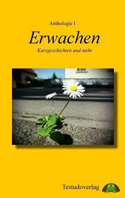 Anthologie I – Erwachen von Eder,  Eva-Maria, Freund,  Isabel, Jahn,  Adrianne, Kiraly,  Bettina, Kloska,  Barbara, Rauschmeier,  Jan C., Thomas,  Salina Petra