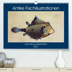 Antike Fischillustrationen nach Marcus Elieser Bloch (Premium, hochwertiger DIN A2 Wandkalender 2021, Kunstdruck in Hochglanz) von Bonheur18 Marena Camadini Switzerland,  Kavodedition
