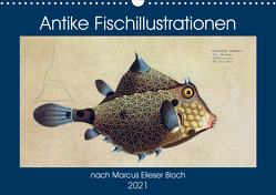 Antike Fischillustrationen nach Marcus Elieser Bloch (Wandkalender 2021 DIN A3 quer) von Bonheur18 Marena Camadini Switzerland,  Kavodedition