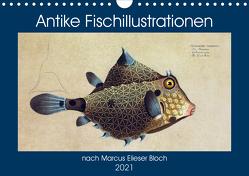 Antike Fischillustrationen nach Marcus Elieser Bloch (Wandkalender 2021 DIN A4 quer) von Bonheur18 Marena Camadini Switzerland,  Kavodedition