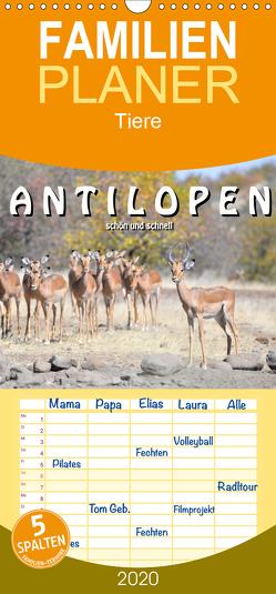 Antilopen, schön und schnell – Familienplaner hoch (Wandkalender 2020 , 21 cm x 45 cm, hoch) von Styppa,  Robert
