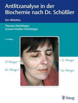 Antlitzanalyse in der Biochemie nach Dr. Schüßler von Feichtinger,  Thomas, Niedan-Feichtinger,  Susana
