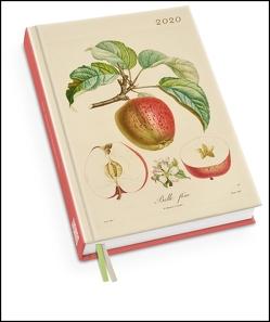 Apfel von Poiteau – Taschenkalender 2020 – Terminplaner mit Wochenkalendarium – Format 11,3 x 16,3 cm von DUMONT Kalenderverlag, Poiteau,  Pierre Antoine