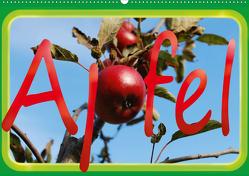 Apfel (Wandkalender 2021 DIN A2 quer) von tinadefortunata