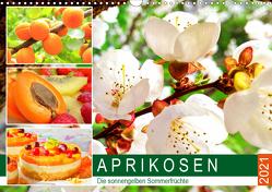 Aprikosen. Die sonnengelben Sommerfrüchte (Wandkalender 2021 DIN A3 quer) von Hurley,  Rose