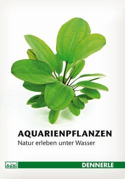 Aquarienpflanzen von Gaida,  Ulrich, Homrighausen,  Christian, Hummel,  Stefan, Kasselmann,  Christel, Logemann,  Frank, Lukhaup,  Chris