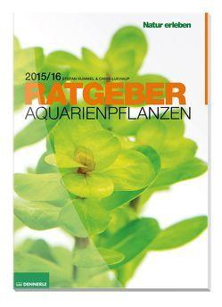 Aquarienpflanzen Ratgeber von Hummel,  Stefan