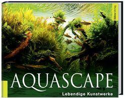 Aquascape von Bauer,  Ulrike