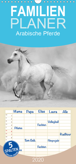 Arabische Pferde – Familienplaner hoch (Wandkalender 2020 , 21 cm x 45 cm, hoch) von Stanzer,  Elisabeth