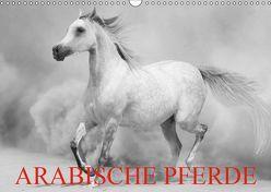 Arabische Pferde (Wandkalender 2019 DIN A3 quer) von Stanzer,  Elisabeth