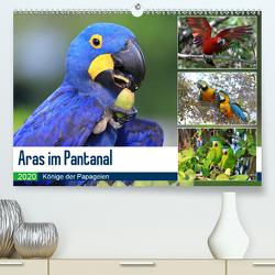 Aras im Pantanal (Premium, hochwertiger DIN A2 Wandkalender 2020, Kunstdruck in Hochglanz) von und Michael Herzog,  Yvonne