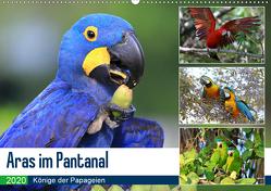 Aras im Pantanal (Wandkalender 2020 DIN A2 quer) von und Michael Herzog,  Yvonne