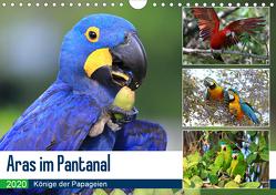 Aras im Pantanal (Wandkalender 2020 DIN A4 quer) von und Michael Herzog,  Yvonne