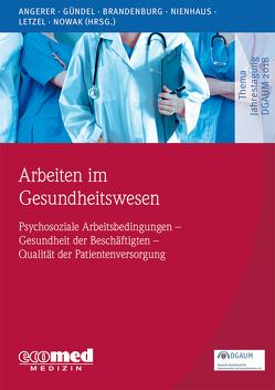 Arbeiten im Gesundheitswesen von Angerer,  Peter, Brandenburg,  Stephan, Gündel,  Harald, Letzel,  Stephan, Nienhaus,  Albert, Nowak,  Dennis