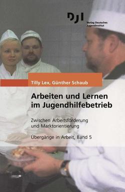 Arbeiten und Lernen im Jugendhilfebetrieb von Lex,  Tilly, Schaub,  Günther