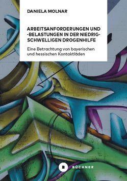 Arbeitsanforderungen und -belastungen in der niedrigschwelligen Drogenhilfe von Molnar,  Daniela