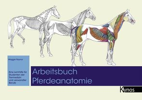 Arbeitsbuch Pferdeanatomie von Raynor,  Maggie